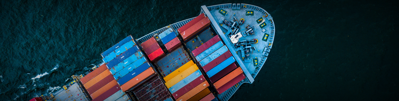 BNSF Logistics is an ocean transport intermediary that offers expert global supply chain solutions.